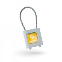 Automotive keychains Maestro